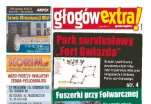 thumbnail of GlogowExtra 31