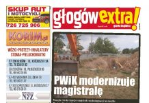 thumbnail of glogowextra 38